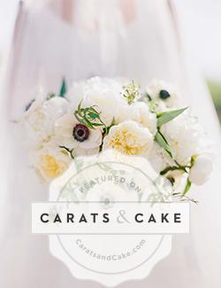 Carats & Cake ~ Melissa + Scott